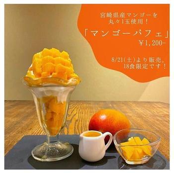 mango-pic.jpg